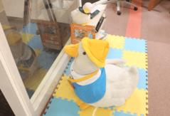 Luz大森店